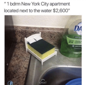 """Six people will split the rent: """"1 bdrm New York City apartment  located next to the water $2,600""""  DA  ANTIBA  HORE  CHAT Six people will split the rent"""