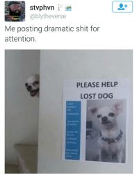 may I have your attn pls: 1  @blytheverse  a dad on the i  Me posting dramatic shit for  attention.  PLEASE HELP  LOST DOG  A VERY  FRIENDLY  AND  LOVING DOG  LAST SEEN IN  Y HOUSE  PLEASE TEXT  OR CALL  123456785  87654321  OGS RSSEs  REWARD B may I have your attn pls