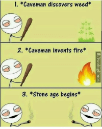Fire, Memes, and Weed: 1. *Caveman discovers weed*  2. *Caveman invents fire*  ga  3. *Stone age begins*