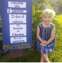 Memes, Survivor, and 🤖: 1 COLLAPSED  LONG  2 SURGERIES  25 days of  radiation  33  Rounds  of  Chemo  Being a  SURVIVOR This is Chloe. Chloe is amazing! Thanks @calynq for the inspirational submission 💞