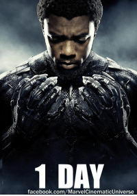 Facebook, Love, and Memes: 1 DAY  facebook.com/MarvelCinematicUniverse One day remains until BLACK PANTHER is released in U.S. theaters.  (Nerds Love Art)