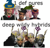 Irl, Me IRL, and Deep: 1 def pures  deep wildy hybrids