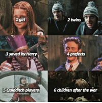 the Weasley family 🙌 harrypotter: 1 girl  saved by Harry,  5Quidditch players  FIREFAWKESS  2 twins  4 prefects  6 children after the war the Weasley family 🙌 harrypotter