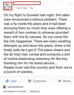 """Cabin Crew: 1 hour ago  On my flight to Dunedin last night, the cabin  crew announced a serious problem. There  was a fly inside the plane and it had been  annoying them so much they were offering a  reward of two cookies to whoever provided  them with the fly carcass. So out come the  Kia Ora magazines. There are many swatting  attempts up and down the plane, when a kid  finally yells he's got it! The plane cheers and  the air host man comes and conducts a sort  of cookie-bestowing ceremony for the boy,  thanking him for his brave service.  People must visit this country and think we're  a bunch of weirdos.  Like  Comment  Share  0 tastefullyoffensive  """"New Zealand in a nut shell  tankerbuzz"""