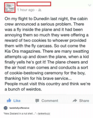"""And then the fly started clapping: 1 hour ago  On my flight to Dunedin last night, the cabin  crew announced a serious problem. There  was a fly inside the plane and it had been  annoying them so much they were offering a  reward of two cookies to whoever provided  them with the fly carcass. So out come the  Kia Ora magazines. There are many swatting  attempts up and down the plane, when a kid  finally yells he's got it! The plane cheers and  the air host man comes and conducts a sort  of cookie-bestowing ceremony for the boy,  thanking him for his brave service...  People must visit this country and think we're  a bunch of weirdos.  Comment  Like  Share  t tastefullyoffensive  """"New Zealand in a nut shell. - tankerbuzz And then the fly started clapping"""