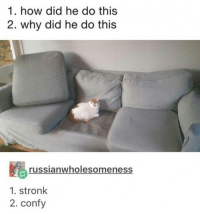 Amazing: 1. how did he do this  2. why did he do this  russianwholesomeness  1. stronk  2. confy Amazing