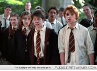 """Hermione, Memes, and Http: 1 in 3 people will read this and go to  MUGGLENET MEMES.COM <p>Harry, Ron and Hermione <a href=""""http://ift.tt/1dRaoFt"""">http://ift.tt/1dRaoFt</a></p>"""