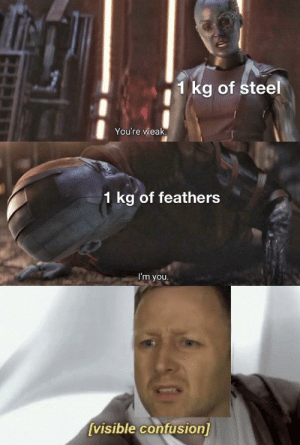 Steel, You, and Confusion: 1 kg of steel  You're weak.  1 kg of feathers  I'm you  [visible confusion] Confusion 100