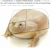 me irl: [-1 KingoftheSocksmember, N*SYNC fanclub 12 points 12 months ago  You can't just put a fibonacci sequence on top of everything!  permalink source embed save save-REs give gold me irl