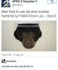 Memes, Bear, and Home: 1  KPRC 2 Houston  @KPRC2  Bear tries to use cat door to enter  home bit.ly/1 N Btk73?utm_so.. #kprc2  10:05 PM 17 Aug 15  pizzaback  he looks so sad.. just let him in Let him in via /r/memes https://ift.tt/2pjtfkz