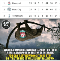 Liverpool ready to crumble? 😳: 1  Liverpool  25 19 5 1 62 56 15  ) Man.City  25 19 2 4 59 66 20  3 Tottenham 25 19 0 6 57 51 24  慣  ORGANIZATION  LIVERPOOL  FOOTBALL CLU  EST 1822  WHAT IS COMMON BETWEEN AN ELEPHANT ON TOP OF  A TREE & LIVERPOOL ON THE TOP OF THE TABLE?  YOU CAN'TSAY HOW WILLSTAY  ONIT BUT IN END IT WILL SURELY FALL DOWN  LONG IT Liverpool ready to crumble? 😳