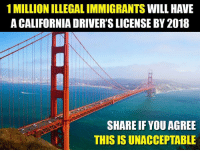 Ridiculous.: 1 MILLION ILLEGAL IMMIGRANTS WILL HAVE  A CALIFORNIA DRIVER'S LICENSE BY 2018  SHARE IF YOU AGREE  THIS IS UNACCEPTABLE Ridiculous.