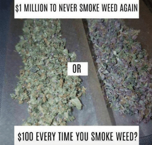 smoking weed: $1 MILLION TO NEVER SMOKE WEED AGAIN  OR  $100 EVERY TIME YOU SMOKE WEED?