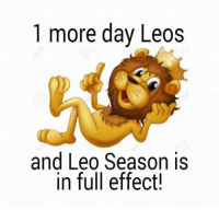 Tomorrow! Are you ready? To celebrate our Season, we have many exclusive designs shirts ONLY FOR LEOS, HERE: https://viralstyle.com/store/horoscope/leo-astrology !! Shop now and rock your birthday with Proud! :): 1 more day Leos  and Leo Season is  in full effect! Tomorrow! Are you ready? To celebrate our Season, we have many exclusive designs shirts ONLY FOR LEOS, HERE: https://viralstyle.com/store/horoscope/leo-astrology !! Shop now and rock your birthday with Proud! :)