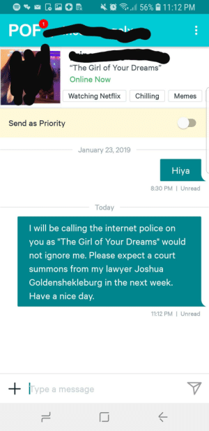 """I will see you in court: 1  POF  """"The Girl of Your Dreams""""  Online Now  Watching NetflixChling Memes  Send as Priority  January 23, 2019  Hiya  8:30 PM I Unread  Today  I will be calling the internet police on  you as """"The Girl of Your Dreams"""" would  not ignore me. Please expect a court  summons from my lawver Joshua  Goldenshekleburg in the next week.  Have a nice day.  11:12 PM I Unread  Type a message I will see you in court"""