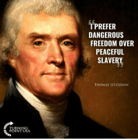 Memes, Thomas Jefferson, and Free: 1 PREFER  DANGEROUS  FREEDOM OVER  PEACEFUL  SLAVERY  THOMAS JEFFERSON  TURNING  POINT USA Freedom > Free Stuff! #BigGovSucks