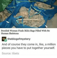 Funny, Ikea, and Memes: 1  Swedish Woman Finds IKEA Bags Filled With 80  Human Skeleton:s  theblogofmystery  And of course they come in, like, a million  pieces you have to put together yourself.  Source: tibets I'm probably gonna dye my hair purple again soon clean cleanfunny cleanhilarious cleanposts cleanpictures cleanaccount funny funnyaccount funnypictures funnyposts funnyclean funnyhilarious