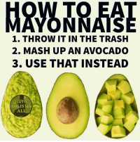Follow ➡️ @holisticali for good health instructions 🥑🥑🥑🥑🥑😂😂😂 Although lately they're making some bomb vegan mayonnaise, so I'll give them that. Actual future convo ⬇️ Future Wife: What do you want in your sandwich Me: Avocados Future Wife: What Else? Me: Avocados Future Wife: Okay, What else? Me:Avocados Her: Habibi you're such an easy person to feed. HolisticAli Mayonnaise Mayo Avocado IG 👉🏽 @realrawtruth FACEBOOK-YOUTUBE-SNAPCHAT 👉🏽 @holisticali SUBSCRIBE TO NEW YOUTUBE LINK IN BIO: 1. THROW IT IN THE TRASH  2. MASH UP AN AVOCADO  3. USE THAT INSTEAD  IG/FB  HOLISTIC  ALI Follow ➡️ @holisticali for good health instructions 🥑🥑🥑🥑🥑😂😂😂 Although lately they're making some bomb vegan mayonnaise, so I'll give them that. Actual future convo ⬇️ Future Wife: What do you want in your sandwich Me: Avocados Future Wife: What Else? Me: Avocados Future Wife: Okay, What else? Me:Avocados Her: Habibi you're such an easy person to feed. HolisticAli Mayonnaise Mayo Avocado IG 👉🏽 @realrawtruth FACEBOOK-YOUTUBE-SNAPCHAT 👉🏽 @holisticali SUBSCRIBE TO NEW YOUTUBE LINK IN BIO