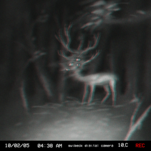 Deer, Tumblr, and Animal: 10/02/05 04: 38 AM sibeck disital camera 10.C REC slimyswampghost: Another still from the Centennial Ridges Trail in the Algonquin provincial park in Ontario, Canada. On October 2nd, 2005, at 4:01 AM a large grazing pack of deer was captured on the cam. At 4:30, the pack, en masse, runs off camera, as if from a predator. At 4:38, this animal is briefly seen. The temperature drops 8 degrees in a matter of minutes. The animal shown then wanders off frame and is not seen again.