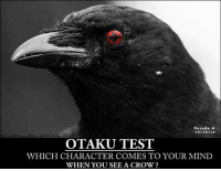 crow: 10/02/13  oodOA chiha  OTAKU TEST  WHICH CHARACTER COMES TO YOUR MIND  WHEN YOU SEE A CROW?