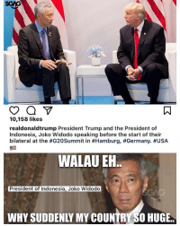 Memes, Germany, and Indonesia: 10,158 likes  realdonaldtrump President Trump and the President of  Indonesia, Joko Widodo speaking before the start of their  bilateral at the #G20Summit in #Hamburg, #Germany·#USA  WALAU EN  President of Indonesia, Joko Widodo  WHY SUDDENLY MY COUNTRY SO HUGE. You gotta be kidding me with this..