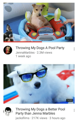 blueivy-official: this is the kinda content i subscribed for: 10:19  Throwing My Dogs A Pool Party  JennaMarbles 2.3M views  1 week ago   3:02  Throwing My Dogs a Better Pool  Party than Jenna Marbles  jacksfilms 217K views 3 hours ago blueivy-official: this is the kinda content i subscribed for