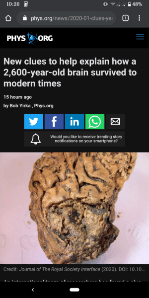 """Is this what it looks like when they say """"chewing on someone's brains"""", like a chewy chocolate chip cookie?: 10:26  lx lx  phys.org/news/2020-01-clues-yea  PHYS ORG  New clues to help explain how a  2,600-year-old brain survived to  modern times  15 hours ago  by Bob Yirka , Phys.org  f  in  Would you like to receive trending story  notifications on your smartphone?  Credit: Journal of The Royal Society Interface (2020). DOI: 10.10.. Is this what it looks like when they say """"chewing on someone's brains"""", like a chewy chocolate chip cookie?"""