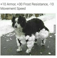 Memes, 🤖, and Resistance: +10 Armor, +30 Frost Resistance, 10  Movement Speed Trying out hash tags again videogames memes dankmemes gaming comedy callofduty