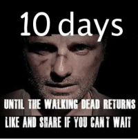 Memes, The Walking Dead, and Today: 10 days  UNTIL THE WALKING DEAD RETURNS  LIKE AND SHARE IF YOU CANT WAIT #TheWalkingDead fans, an actual response today would be awesome of you guys. :) (y)  www.egvoproductions.com