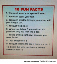"""Facts, Friends, and Tumblr: 10 FUN FACTS  1. You can't wash your eyes with soap.  2. You can't count your hair  3. You can't breathe through your nose, with  your tongue out.  4. You just tried no. 3  6. When you did no. 3 you realized it's  possible, only you look like a dog  7. You're smiling right now, because you  were fooled  8. You skipped no. 5  9. You just checked to see if there is a no. 5  10. Share this with your friends to have  some fun too! -)  you should probably go to TheMetaPicture.com <p><a href=""""https://epicjohndoe.tumblr.com/post/170117418338/10-fun-facts-you-probably-didnt-know"""" class=""""tumblr_blog"""">epicjohndoe</a>:</p>  <blockquote><p>10 Fun Facts You Probably Didn't Know</p></blockquote>"""