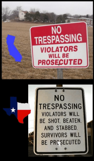 Prosecuted