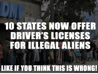 What do you think?: 10 STATES NOW OFFER  DRIVER'S LICENSES  FOR ILLEGAL ALIENS  LIKE IF YOU THINKTHIS IS WRONG! What do you think?