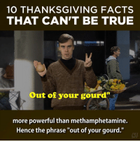 """They're unbelievable! So don't!: 10 THANKSGIVING FACTS  THAT CAN'T BE TRUE  Out of your gourd''  more powerful than methamphetamine.  Hence the phrase """"out of your gourd."""" They're unbelievable! So don't!"""