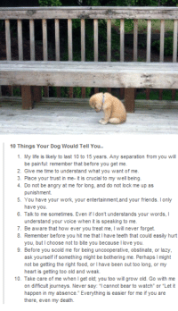 "Dank, 🤖, and Deaths: 10 Things Your Dog Would Tell You..  1. My life is likely to last 10 to 15 years. Any separation from you will  be painful: remember that before you get me.  2. Give me time to understand what you want of me.  3. Place your trust in me- it is crucial to my well being.  4. Do not be angry at me for long, and do not lock me up as  punishment.  5. You have your work, your entertainment, and your friends. lonly  have you.  6. Talk to me sometimes. Even if Idon't understands your words, l  understand your voice when it is speaking to me.  7. Be aware that how ever you treat me, l will never forget.  8. Remember before you hit me that l have teeth that could easily hurt  you, but choose not to bite you because l love you.  9. Before you scold me for being uncooperative, obstinate, or lazy,  ask yourself if something might be bothering me. Perhaps l might  not be getting the right food, or l have been out too long, or my  heart is getting too old and weak.  10. Take care of me when get old; you too will grow old. Go with me  on difficult journeys. Never say  cannot bear to watch or ""Let it  happen in my absence. Everything is easier for me if you are  there, even my death."