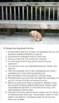 "<h2><b>This is important</b></h2><p><a href=""http://babyanimalgifs.tumblr.com/"" target=""_blank"">more baby <b>animals <i>here</i></b></a></p>: 10 Things Your Dog Would Tell You..  1. My life is likely to last 10 to 15 years. Any separation from you will  be painful: remember that before you get me.  2. Give me time to understand what you want of me.  3. Place your trust in me- it is crucial to my well being.  4. Do not be angry at me for long, and do not lock me up as  punishment  5. You have your work, your entertainment,and your friends. Ionly  have you.  Tailk to me sometimes. Even if I dont understands your words, I  understand your voice when it is speaking to me.  6.  7. Be aware that how ever you treat me, will never forget.  8. Remember before you hit me that I have teeth that could easily hurt  you, but I choose not to bite you because llove you.  9. Before you scold me for being uncooperative, obstinate, or lazy,  ask yourself if something might be bothering me. Perhaps might  not be getting the right food, or I have been out too long, or my  heart is getting too old and weak.  10. Take care of me when I get old; you too will grow old. Go with me  on difficult journeys. Never say: cannot bear to watch or Let it  happen in my absence. Everything is easier for me if you are  there, even my death. <h2><b>This is important</b></h2><p><a href=""http://babyanimalgifs.tumblr.com/"" target=""_blank"">more baby <b>animals <i>here</i></b></a></p>"