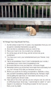 Dogs, Food, and Friends: 10 Things Your Dog Would Tell You..  1. My life is likely to last 10 to 15 years. Any separation from you will  be painful: remember that before you get me.  2. Give me time to understand what you want of me.  3. Place your trust in me- it is crucial to my well being.  4. Do not be angry at me for long, and do not lock me up as  punishment.  5. You have your work, your entertainment,and your friends. only  have you.  6. Talk to me sometimes. Even if don't understands your words,  understand your voice when itis speaking to me.  7. Be aware that how ever you treat me, l will never forget.  8. Remember before you hit me that l have teeth that could easily hurt  you, but choose not to bite you because llove you.  9. Before you scold me for being uncooperative, obstinate, or lazy  ask yourself if something might be bothering me. Perhaps l might  not be getting the right food, or Ihave been out too long, or my  heart is getting too old and weak.  10. Take care of me when l get old you too will grow old. Go with me  on difficult journeys. Never say: cannot bear to watch or Let it  happen in my absence. Everything is easier for me if you are  there, even my death. https://t.co/R4HoTWVW9v
