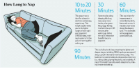 "Energy, Facts, and Tumblr: 10 to 20 30  MinutesMinutesMinutes  How Long to Nap  60  This nap is best for  improvement in  remembering facts,  faces and names. It  includes slow-wave  This power nap is  ideal for a boost in  alertness and energy,  experts say. This  length usually limits  you to the lighter  tages of non-rapid  eye movement  (NREM) sleep, mak  ing it easier to hit the  ground running after  waking up.  Some studies show  sleeping this long  may cause sleep  inertia, a hangover-  like groggy feeling  that lasts for up to 30  minutes after  waking up, before  the nap's restorative  benefits become  apparent.  sleep, the deepest  type. The downside  some grogginess  upon waking up  90  This is a full cycle of sleep, meaning the lighter and  deeper stages, including REM (rapid eye movement)  sleep, typicallylikened tothe dreaming stage. This  leads to improved emotional and procedural memory  (i.e. riding a bike, playing the piano) and creativity. A  nap of this length typically avoids sleepinertia, mak  ing it easier to wake up. <p><a class=""tumblr_blog"" href=""http://www.ingenierodelmonton.com/post/77279406863/tipos-de-siesta"">ingenierodelmonton</a>:</p> <blockquote> <h1>¿Durante cuanto tiempo deberíamos echar la siesta?</h1> <ul><li><em>De 10 a 20 minutos</em>: Ideal para coger <strong>energía</strong> y estar alerta.</li> <li><em>30 minutos: </em>Puede causar un <strong>efecto de cansancio/aturdimiento</strong> nada más levantarnos.</li> <li><em>60 minutos: </em>La mejor para aumentar la <strong>capacidad de recordar hechos, caras y nombres</strong>. Como contra puede causar aturdimiento nada más levantarnos.</li> <li><em>90 minutos: </em><span>Es un ciclo de sueño completo lo que nos permite mejorar nuestra </span><strong>memoria emocional/procesal y nuestra creatividad.</strong></li> </ul><p><em><a href=""http://www.ingenierodelmonton.com/tagged/cuerpo%20humano"" title=""cuerpo humano"">Más artículos sobre curiosidades del cuerpo humano aquí.</a></em></p> <p><a href=""http://www.ingenierodelmonton.com/submit"" title=""submit"">¿Quieres compartir algo interesante? ¡Haz una aportación!</a></p> </blockquote> <h3>Si te pasas de 90 minutos en una siesta, eres un maldito enfermo</h3> <p>Pero vamos yo es que soy crónico.</p>"