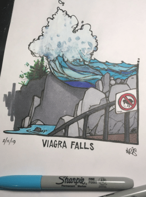 Anaconda, Star, and Viagra: 100  11101  VIAGRA FALLS  Star PIL  FINE AT  Permanent Marker [OC] I tried being clever