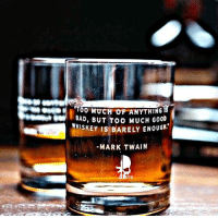 """Memes, Too Much, and Mark Twain: 100 MUCH OF ANYTHING  BAD, BUT Too MUCH GooD  WHISKEY IS BARELY ENOUGH""""  MARK TWAIN  TEU"""
