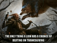 Detroit, Detroit Lions, and Thanksgiving: THE ONLY THING ALIONHASA CHANCE OF  BEATING ON THANKSGIVING  WWWDA Happy thanksgiving everybody, I hope some of you will be taking part in our Michigan tradition of watching the Detroit Lions lose horribly with me.  -Toolmaster