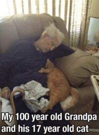 Funny Cat Memes: My 100 year old Grandpa  and his 17 year old cat