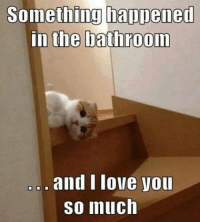 I Love: Something happened  in the bathroom  and I love you  So much