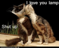 Shut up  ICAN  I love you lamp I love this one...so funny.