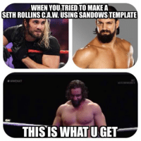 Seth Rollins: WHEN YOUITRIED TO MAKE A  SETH ROLLINS CIA.V. USING SANDOWSTEMPLATE  WWENXT  THIS IS WHAT UNGET