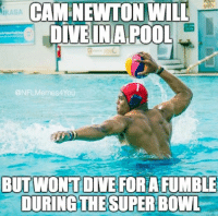 Like Our Page NFL Memes: CAM NEWTON WILL  IIKASA  DIVE IN A POOL  ONFLMermes4You  BUT WONT DIVE FORAFUMBLE  DURING THE SUPERBOWL  Like Our Page NFL Memes