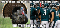 ONE OF THESE TWO ISGETTINGKILLED ONTHANKSGIVING  @NFL MEMES  SANGHEZ  THE OTHER ONE IS A TURKEY Chip Kelly be like our plays would work if we were wearing the Color Rush uniforms!