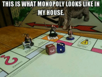 THIS IS WHAT MONOPOLY LOOKS LIKE IN  MY HOUSE Make way for Sir Garithor, slayer of ogre and master Real estate tycoon! -Toolmaster
