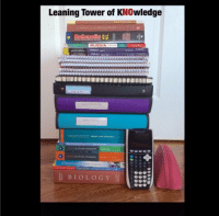 Every IB student truly has a new decor piece for their desk when they create a tower of their books: Leaning Tower of KNOwledge  RUSSIA  Chemistry  BIOLOGY Every IB student truly has a new decor piece for their desk when they create a tower of their books