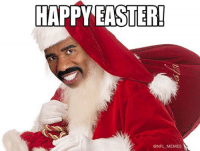 Dammit Steve... Merry Christmas from NFL Memes!: HAPPY EASTER!  Ni  NFL MEMES Dammit Steve... Merry Christmas from NFL Memes!