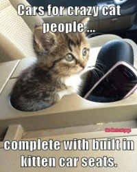 Cat Memes: Cars for Crazy Cat  people  the best cat Dage  complete with built in  kitten car seats.